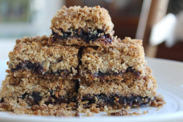 Crunchy Oatmeal Blueberry Squares